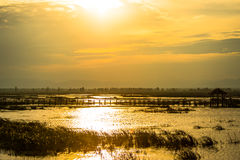 Wooden bridge spanning the lake wider. The vast marsh at sunset in the park, one of Thailand Royalty Free Stock Images
