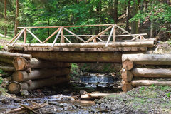 Wooden bridge through stream in forest Royalty Free Stock Image