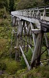 A wooden bridge structure in a forrest at the Humpridge Track in the Southland in the South Island of New Zealand. A wooden bridge structure in a forrest at the stock photos