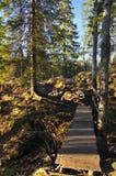 Wooden bridge in sunbeam light. With rock path Stock Photography
