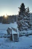 Wooden bridge during sunrise Stock Photos