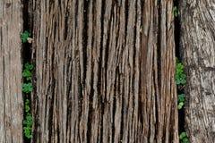 Wooden bridge Texture Royalty Free Stock Photography