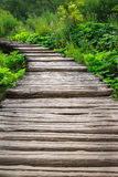 Wooden bridge in the thickets Stock Photos