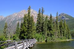 Wooden bridge to an island in Patricia Lake Royalty Free Stock Photos