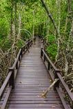 Wooden bridge to the jungle, Prachuap Khiri Khan, Thailand Royalty Free Stock Image