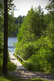 The wooden bridge to lake in forest Stock Photo