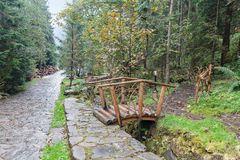 Wooden bridge and trail in wet rainy park Royalty Free Stock Photos