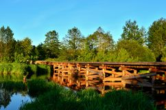 A wooden bridge of tree logs lies across a small river inside a wooded area among green nature. The `Bobr` River in the Republic of Belarus. Evening sunset on royalty free stock images