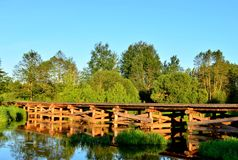 A wooden bridge of tree logs lies across a small river inside a wooded area among green nature. The `Bobr` River in the Republic of Belarus. Evening sunset on royalty free stock photos