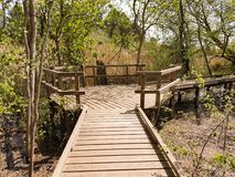 Wooden bridge over a river. Wooden bridge between trees and on the arm of a river Royalty Free Stock Photos