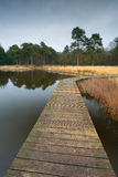 Wooden bridge trough a pond. Royalty Free Stock Images