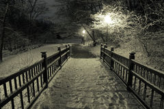 Wooden bridge under snow Royalty Free Stock Photo