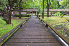 Wooden bridge. In the university Royalty Free Stock Image