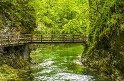 Wooden bridge in Vintgar gorge Stock Photos