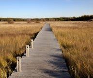 Wooden bridge in the wetlands Stock Photo