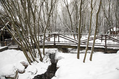 Wooden bridge. winter. The wooden bridge covered with snow in a winter season (rural areas Stock Image