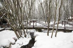 Wooden bridge. winter Stock Image