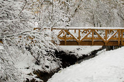 Wooden  bridge in the winter park Royalty Free Stock Images