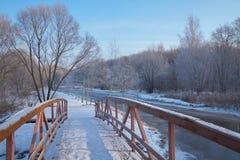 On wooden bridge stock image