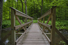 Wooden Bridge in the woods Royalty Free Stock Images