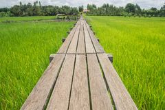 Wooden bridge 100 years old Royalty Free Stock Image