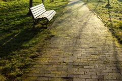 Wooden brown bench in the morning rays of sunlight
