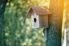 Free Wooden Brown New Bird House Or Nesting Box Attached To Tree Trunk In Summer Park Or Forest On Blurred Sunny Green Foliage Bokeh Royalty Free Stock Photos - 134982948