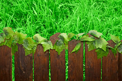 Wooden brown picket fence Stock Images