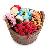 Wooden bucket flower Royalty Free Stock Photo