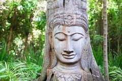 Wooden Buddha statue on green trees background stock photography
