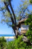Wooden bungalow hidden in treel-line stock photography