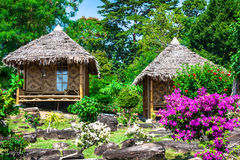 Wooden bungalow resort in ko phi phi island, Thailand Stock Photo