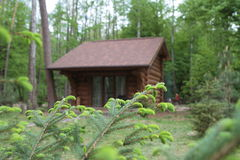 Wooden bungalow row in camping camp park in mountains. Wooden bungalow row in camping camp park stock photography