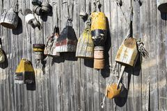 Wooden buoys hanging on fence stock photo