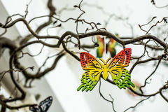 Wooden butterfly Royalty Free Stock Image