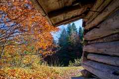 Wooden cabin in Allgäu. Wooden cabin in the autumn forest on the mountains in Allgäu, Bavaria, Germany Royalty Free Stock Image