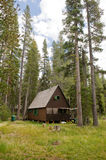 Wooden cabin in forest Royalty Free Stock Images