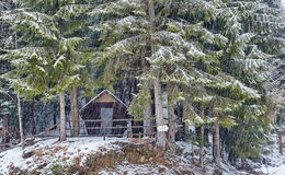 Wooden cabin in the forest on wintertime Stock Photography