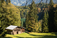 Wooden cabin on a green meadow Royalty Free Stock Photos