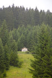 Wooden cabin with green mountain in Tirol Stock Images