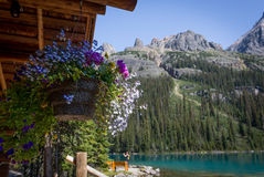 Wooden Cabin. Lake O`Hara, Yoho National Park,  British Columbia Stock Photo