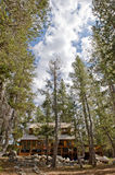 Wooden cabin in scenic forest Stock Photo