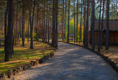 Wooden cabin in the woods Stock Photo