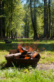 Wooden campfire Royalty Free Stock Images
