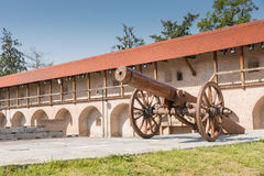 Wooden cannon  in the Oradea fortress. Royalty Free Stock Photos