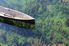 Wooden canoe in pond Stock Photos