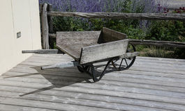 Wooden carry. In lavender farm Stock Photography