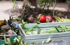 A cart full of fruit and vegetables, outside in the sunshine. Wooden cart filled with fruit and vegetables, outdoors under a tree with dappled lighting royalty free stock image