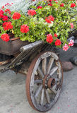 Wooden cart with flowers Stock Images
