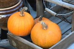 Wooden cart with pumpkins. Pumpkins displayed on wooden cart Royalty Free Stock Photos